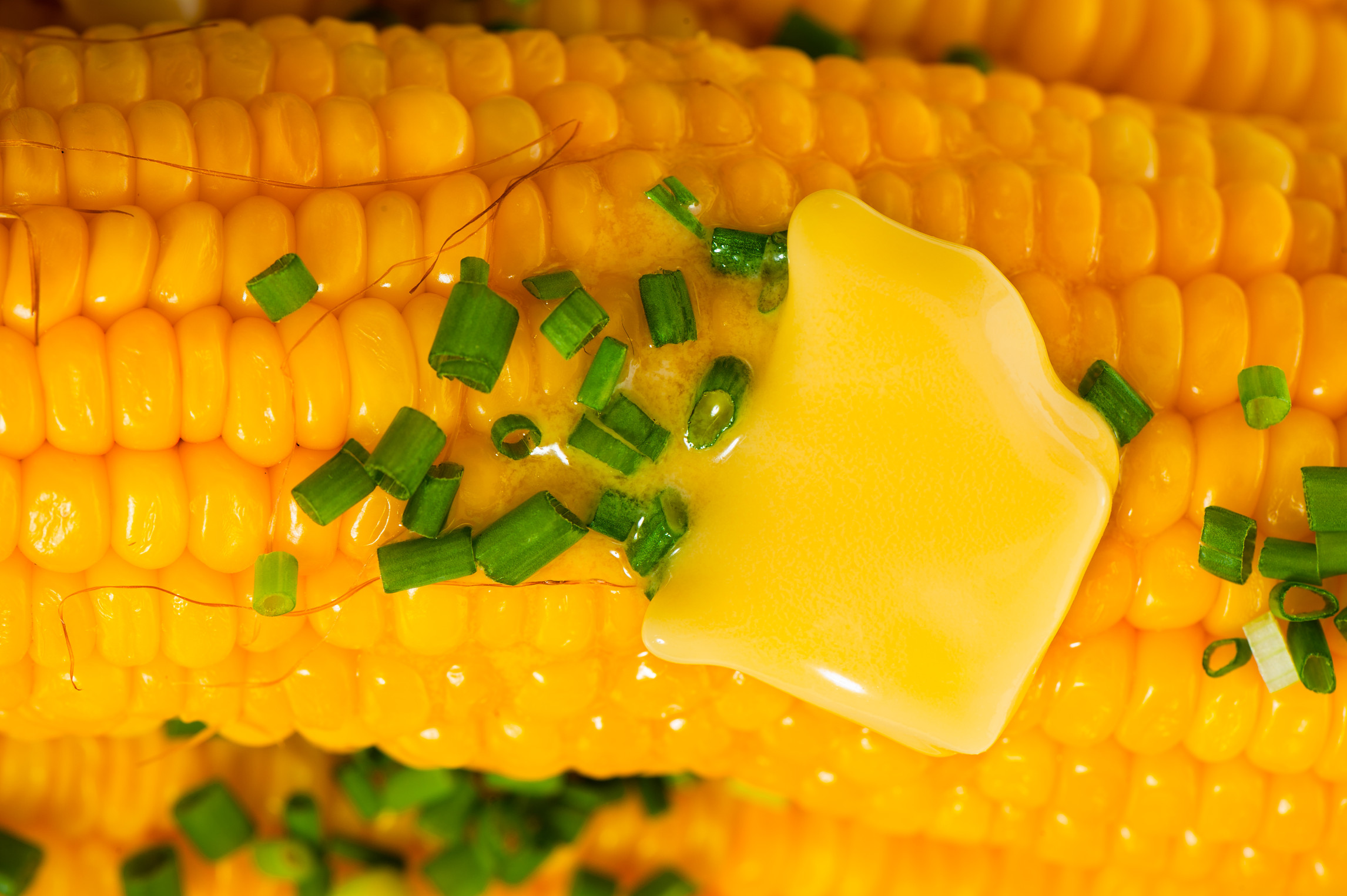 Food Recipe Corn on Cob