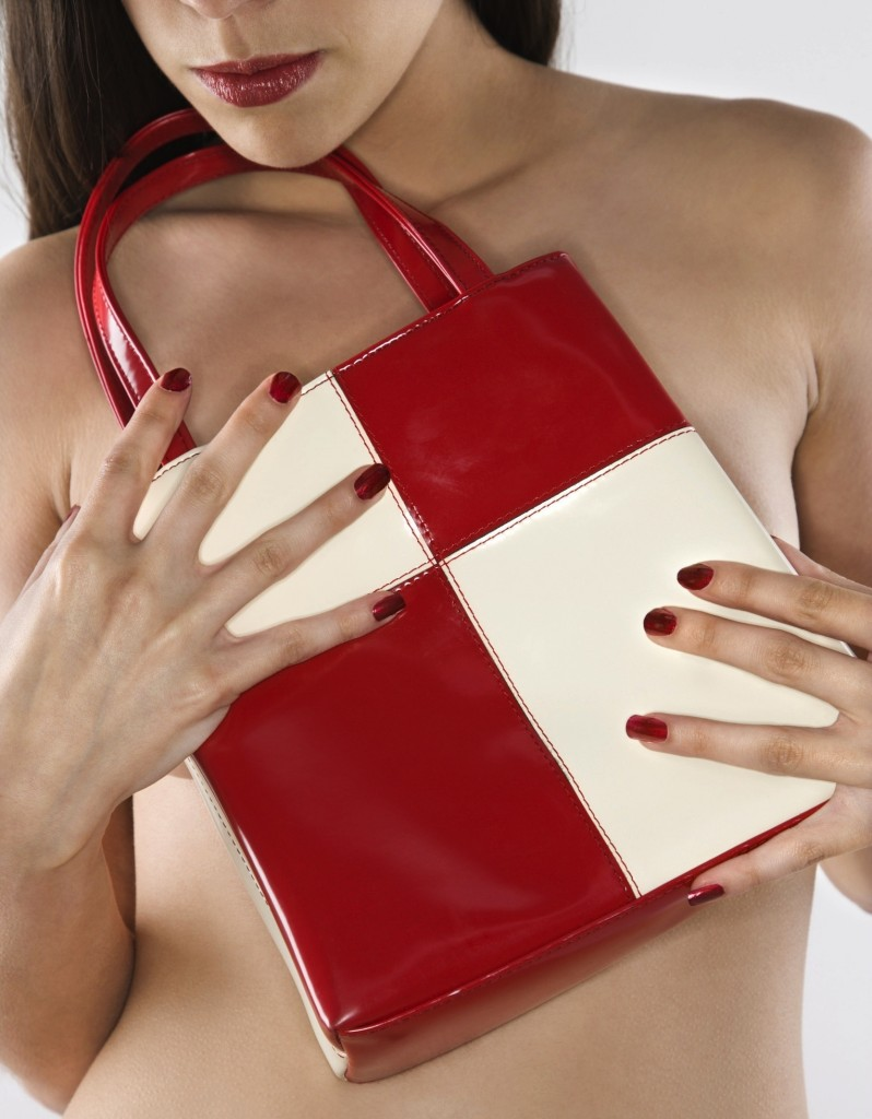 Fashion Red Purse