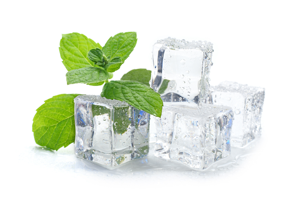 Food Herbs Ice Cube
